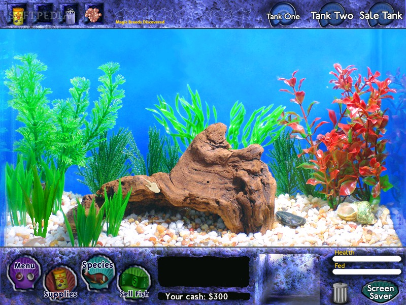 fish money game free play