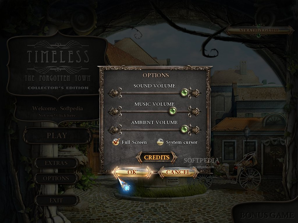 Timeless: The Forgotten Town Collector's Edition screenshot 2