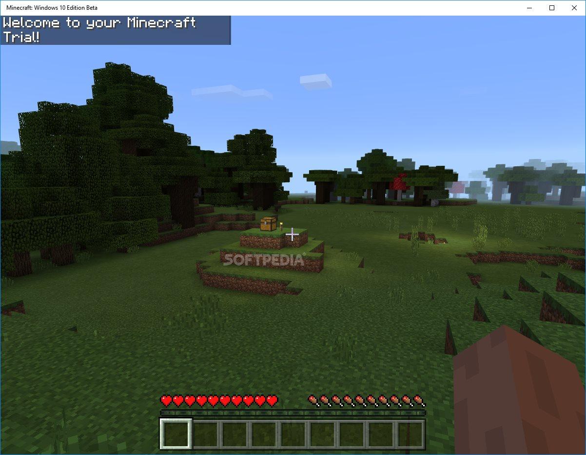 Minecraft for windows 10 won