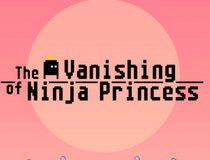 The Vanishing Of Ninja Princess